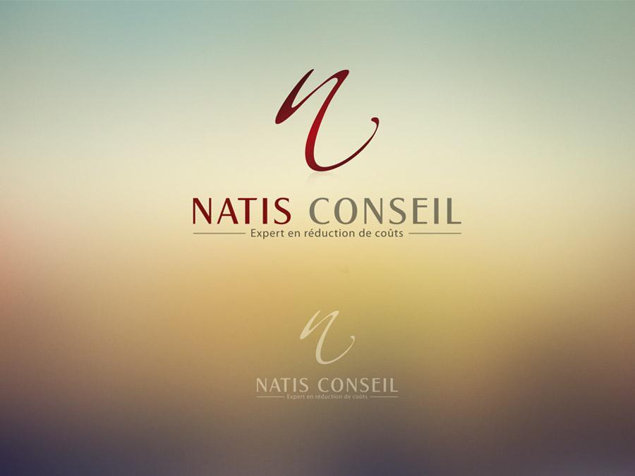 Natis Conseil  | logo